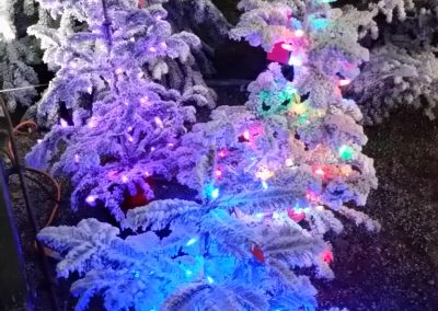 CanTrees Pri-lit Flocked